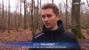 Remi Fromont
